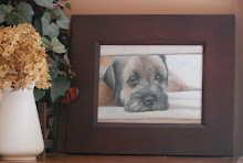 PERFECT PET PORTRAITS by Lisa White