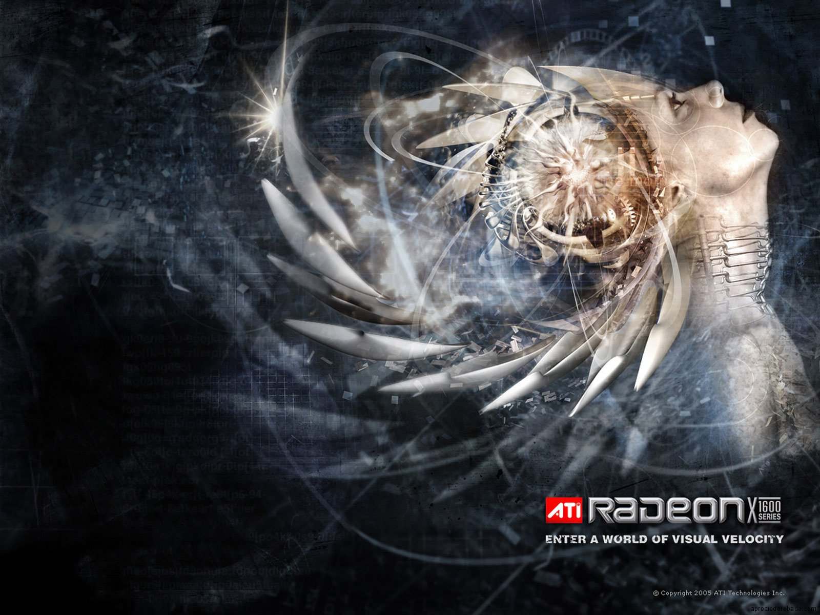 http://1.bp.blogspot.com/_QU8E4UZC7k4/TFZtzzUJfAI/AAAAAAAAADU/_do--Hz1idk/s1600/ATI_Radeon_X1600.jpg