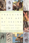 TRACKING &amp; THE ART OF SEEING