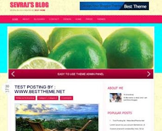 Sevraj blogger template