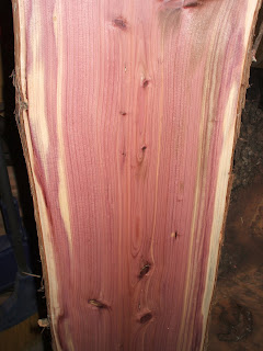 Eastern Red Cedar from my woodlot