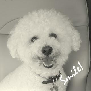 Smile+2.jpg