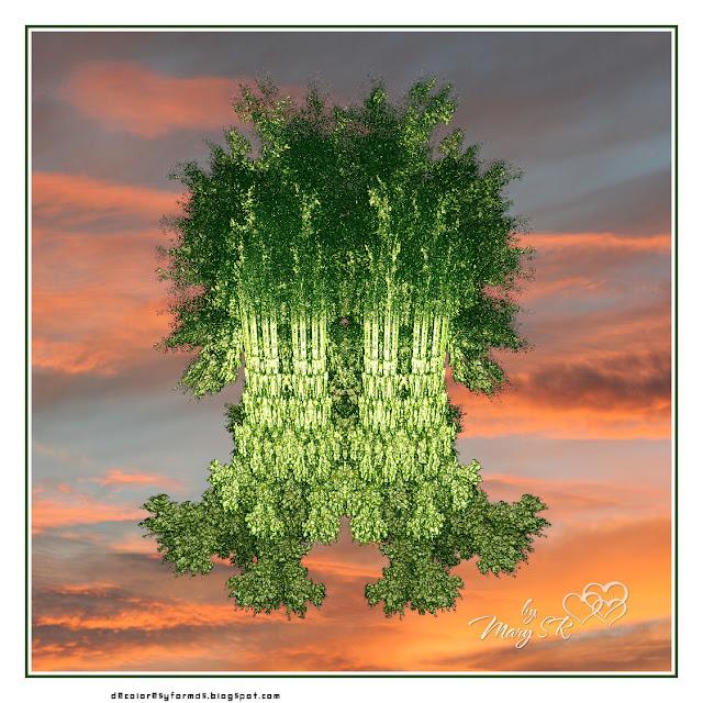 Fractals fractales especial fractales incendia - El arbol encantado ...
