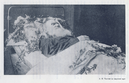 life and death in anna karenina by lev nikolayevich tolstoy Anna karenina, the death of ivan ilych the real tolstoy count lev (leo) nikolayevich tolstoy was google is blocking the world socialist web site from.