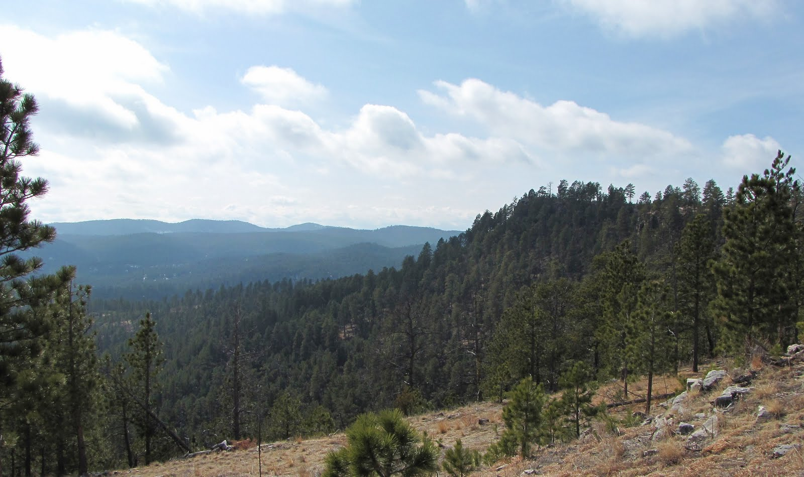 hiking and black hills The black hills are full of monumental works of both man and nature, evident too in the world-class hiking, biking, motorized and non-motorized trail offerings one can find here.