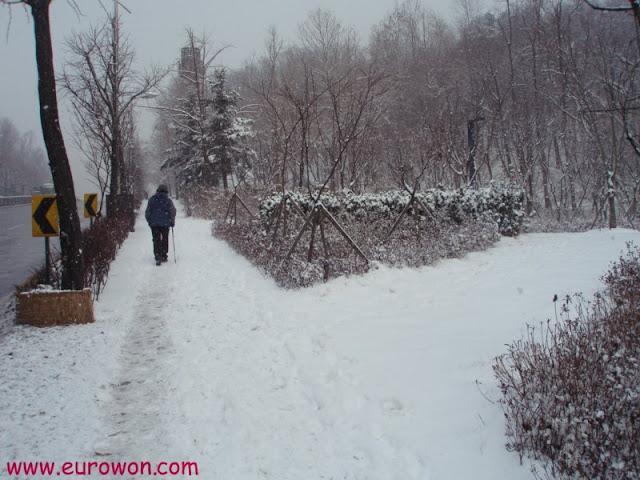 Paseando por Seúl bajo una nevada