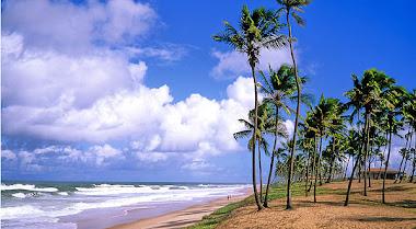 Praia do Forte - BA