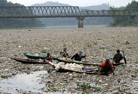 factories along rivers is causing the demise of the animalYangtze River Pollution