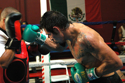 Antonio Margarito trained with Robert Garcia