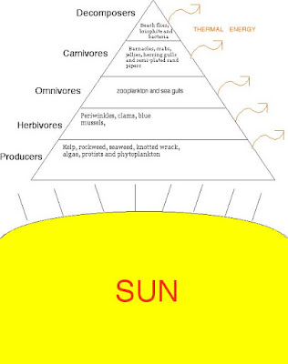 external image ENERGY+PYRAMID.jpg