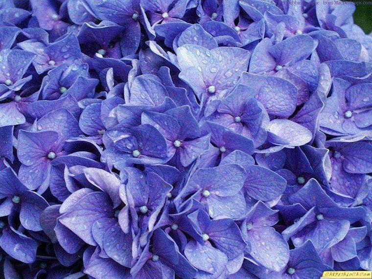 Azul espiritual
