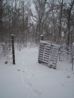 Go thru this gate to get to cabin