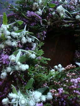 edelweis en heide