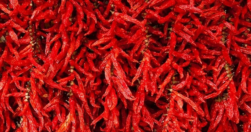 Bergamot Leaf: Dried Red Chilies