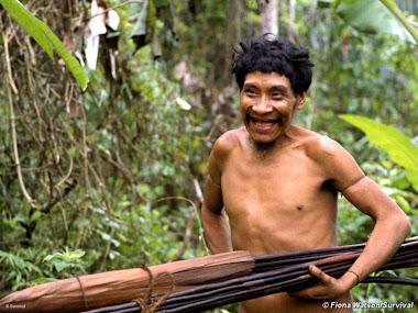 Peñi de la comunidad Awa (Brasil?)