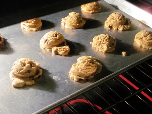 Cookbook Bites: Alice's Chocolate Chip Cookies