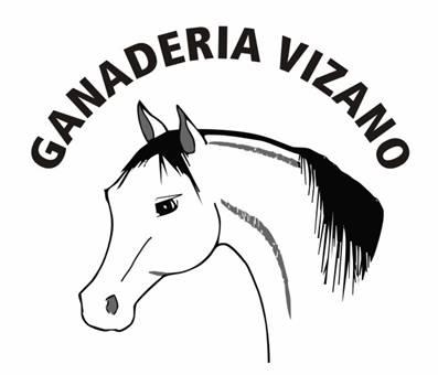 Ganaderia Vizano
