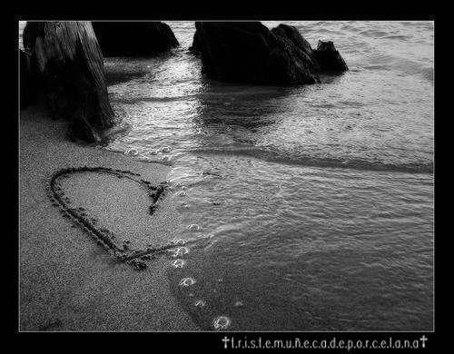 amor corazones. house corazones rotos de amor