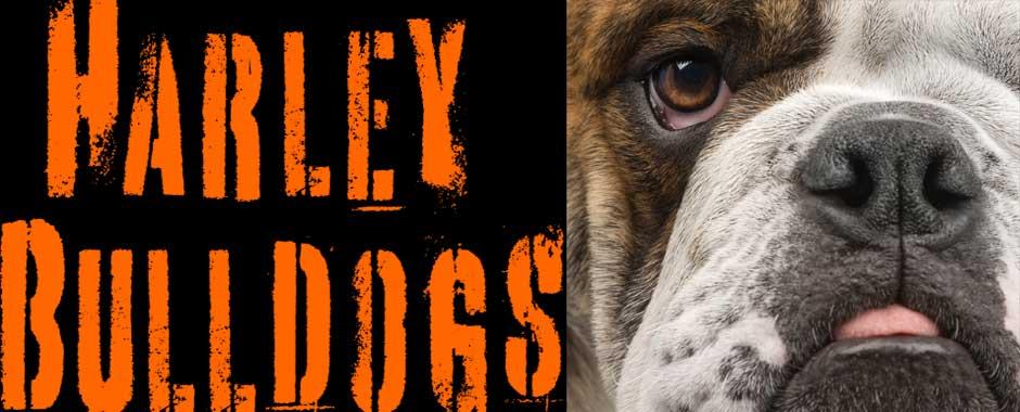 Harley Bulldogs