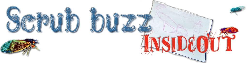 Scrub Buzz Insideout