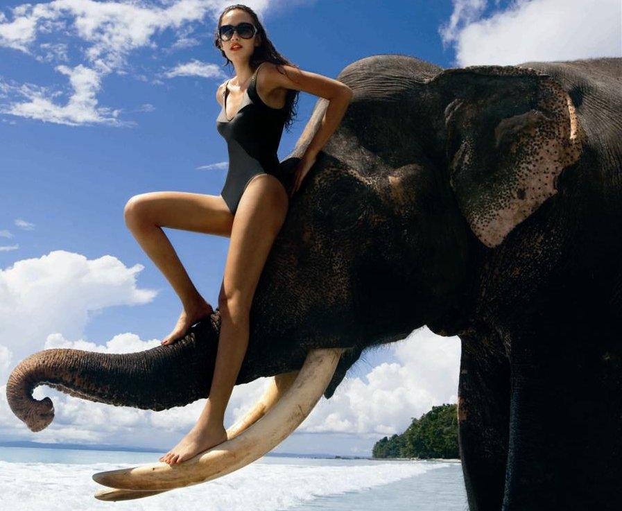 King_Fisher_Models_bikini_12.jpg