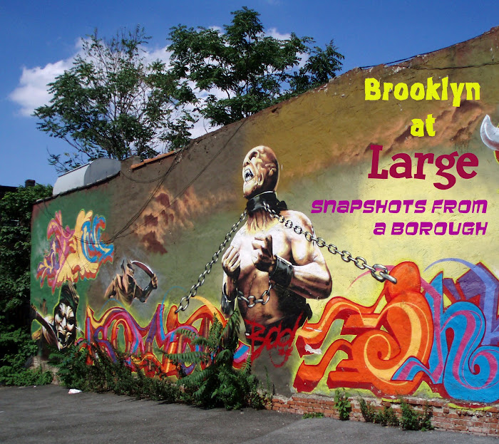 Brooklyn at Large