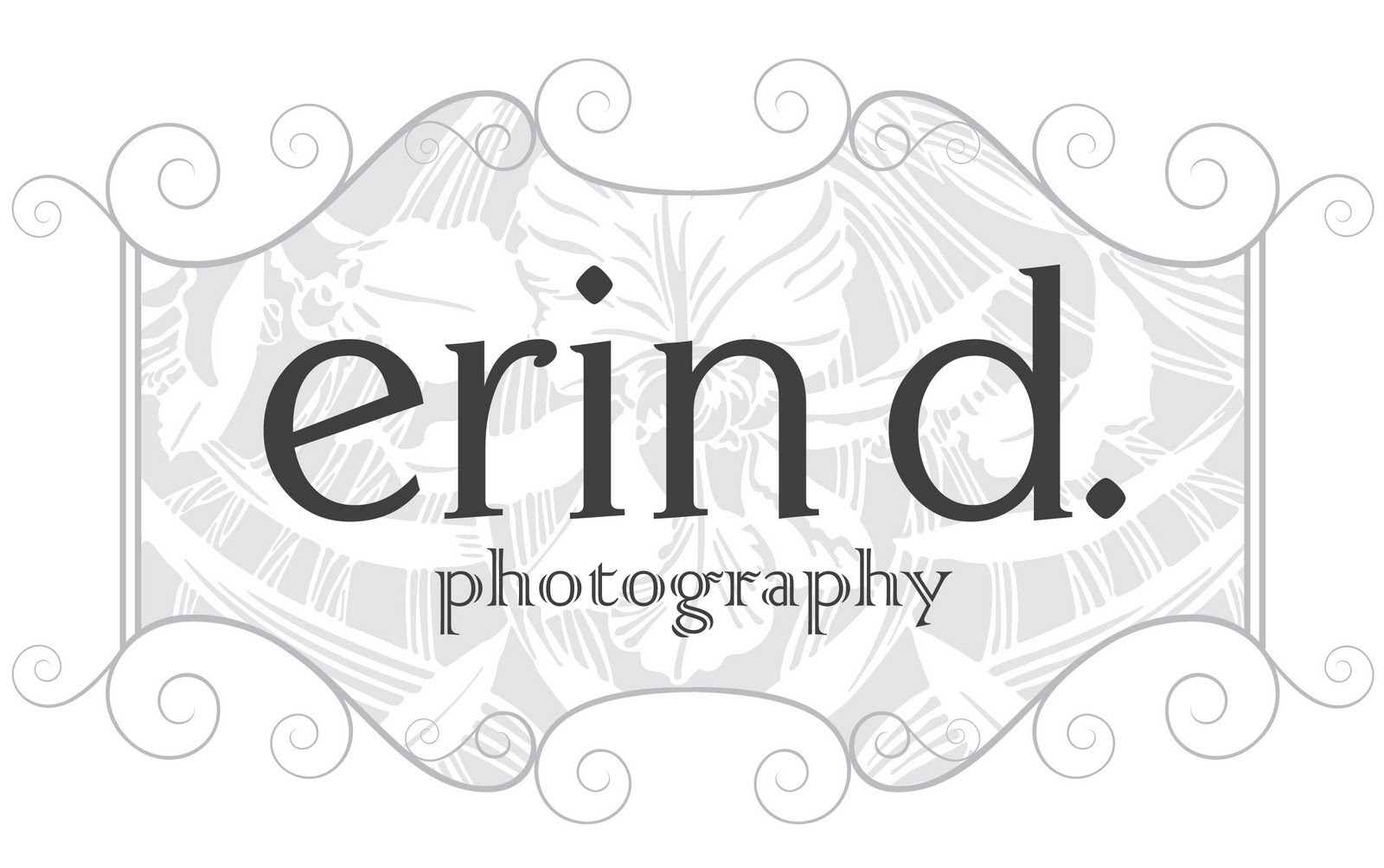 erin d. photography gate