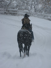 Riding on one snowy day