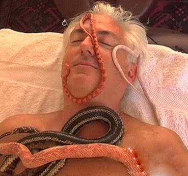 以色列 蛇式按摩 - 以色列 蛇式按摩服務