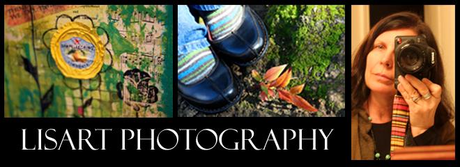 LisArt Photography