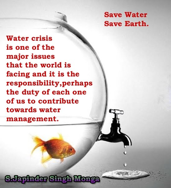 save water save earth essays