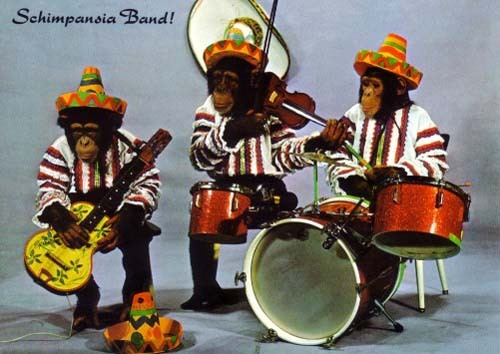 http://1.bp.blogspot.com/_R-_ONwRsAR8/SSIbGT4vDII/AAAAAAAAAtc/IBv3YG9530s/s1600/monkey_mexican_band.jpg