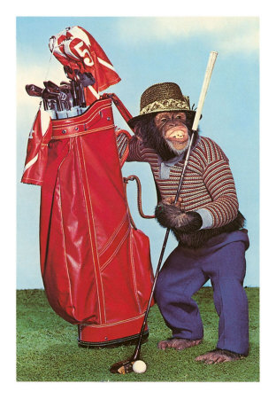Tenue correcte exigée Monkey_playing_golf