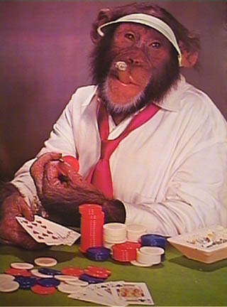 Tenue correcte exigée Chimp_poker_cigar