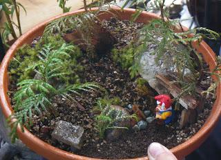 Minigarden / Miniature Garden / Saikei