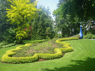 Minter Gardens, British Columbia - The peacock