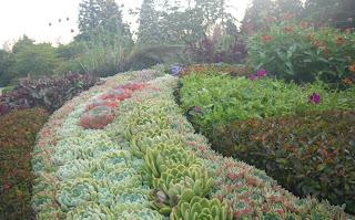Rose Garden, flowerbed, Stanley Park, Vancouver