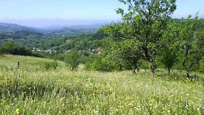 Romanian land