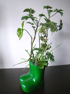 Green - Boots floral arrangements with Mexican Sage Pelargonium