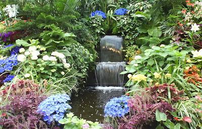 Butchard garden, indoor plants