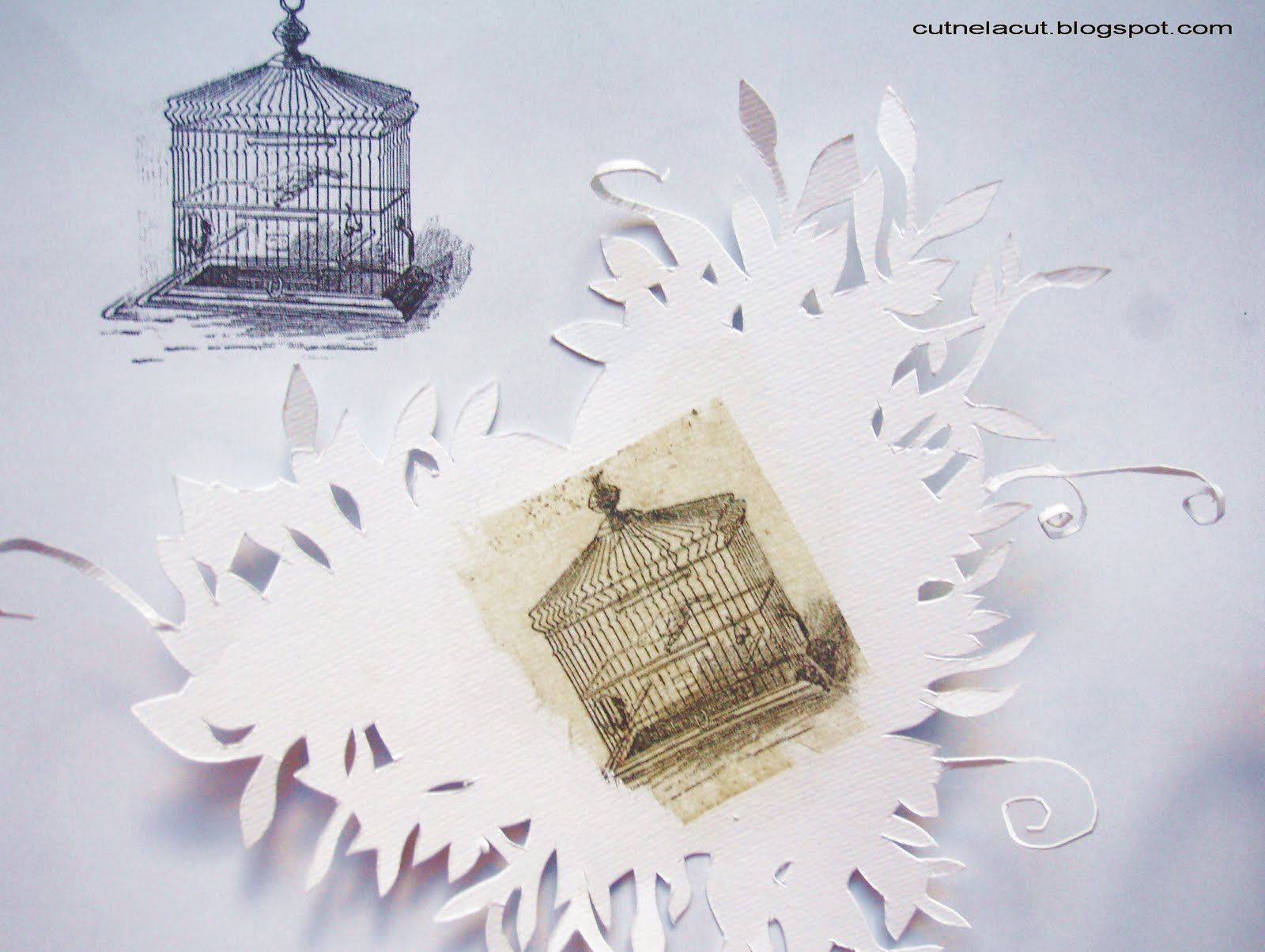 cut, nela, cut: Tea bag printing