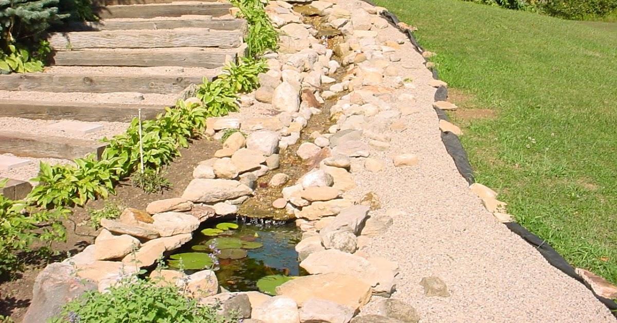 Gardening In The Up Beginnings Ponds
