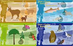Laminas Flora y Fauna
