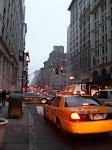 NEW YORK  -  7 novembre 2010