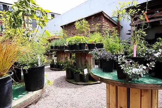 Y un poco de dise o jardines reciclados for Jardines reciclados