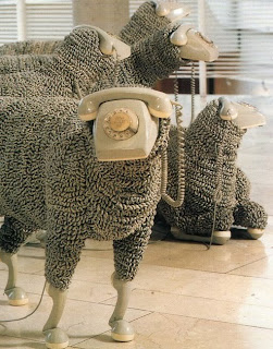 jean-luc-cornec-sheep