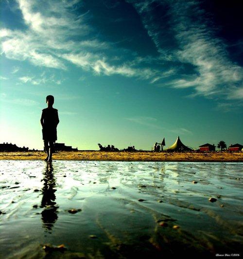 Foto Bayangan Pemandangan di Sawah