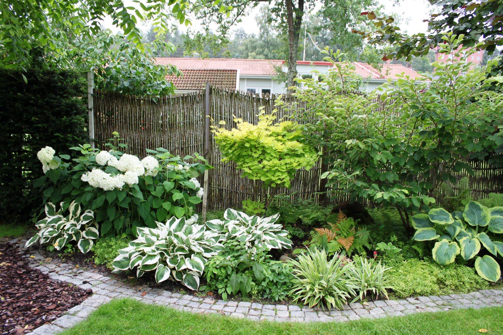 Mina trädgårdar: Trädgårdsbesök del 3