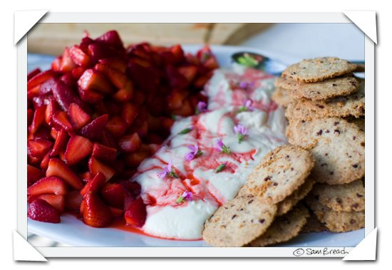 picture photograph image strawberries - wholewheat sables - strained yogurt 2008 copyright of sam breach http://becksposhnosh.blogspot.com/