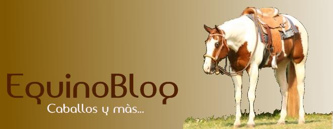 » EquinoBlog | Caballos y más...